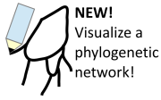 Draw a phylogenetic network!